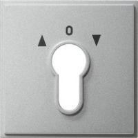 Накладка выключателя с ключом