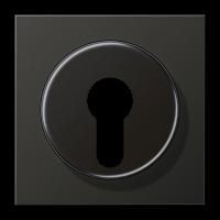 JUNG Крышка для выключателя с замком; антрацит