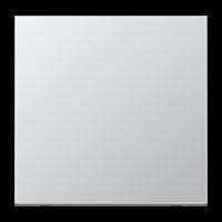 JUNG Клавиша для балансирного выключателя и кнопки; алюминий