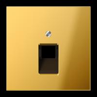 JUNG Крышка для ординарной телефонной и компютерной розетки  UAE; металл цвета золота
