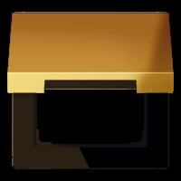 JUNG Крышка откидная для штепсельных розеток с платой 50?50 мм; металл цвета золота