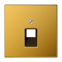 JUNG Крышка для одинарной телефонной и компьютерной розетки UAE; золото