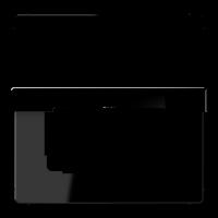 JUNG Крышка откидная для штепсельных розеток с платой 50?50 мм; черная